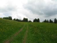 Wunderbar einsame Wege hab ich da auf das GPS gespielt ;-)