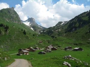 Highlight for album: Marul - Stafelfederalpe - Sterisalpe - Stein - Oberpartnomalpe - Partnomsattel - Alpe Laguz - Marul   1585Hm, 32km