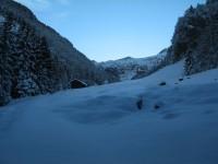 Nach ca. 30min Forststraße erreicht man die ersten herrlichen freien Flächen der Alpe Niderenberg.