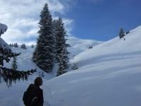 Nach einer längeren Waldpassage erreichen wir die freien Gipfelhänge hinauf zum Galtjoch.