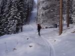 Gerade ausreichend Schnee in den Waldschneisen