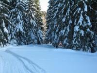 Auch hier im Unteren Gailtal sehr viel Schnee, dass nur noch die Verkehrsschilder herausschauen.