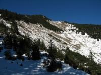 Wir erreichen die Waldgrenze und haben ersten Blick über »Stocklahne« Richtung Gipfel.