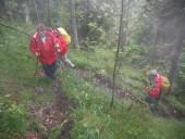 Aufstieg durch steilen Wald bei sehr feuchten und kalten Bedingungen.