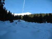 Nach dem langen Zustieg über die Fortstraße im Fotscherbachtal geht es nun über eine Waldschneise Richtung Almindalm.